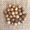 Picture Jasper Gemstone Beads