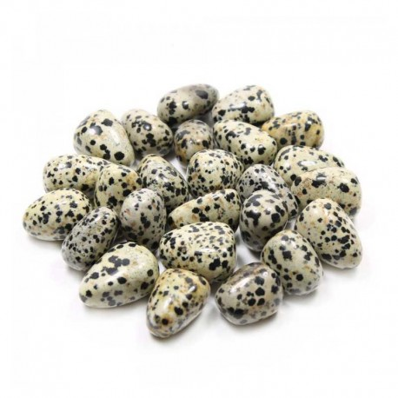 Jasper Dalmatian tumbled gemstones
