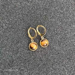 Tiger Eye Earrings Gold Stainless Steel Leverbacks